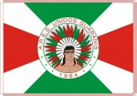 G.R.E.S. Unidos dos Guaranys